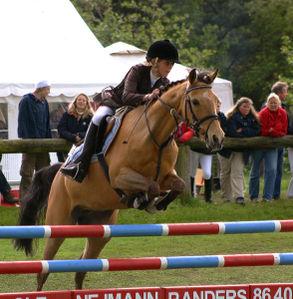 Equestrian_2